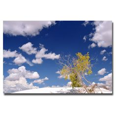 'Clouds and Loneliness' by Philippe Sainte-Laudy Photographic Print on Wrapped Canvas