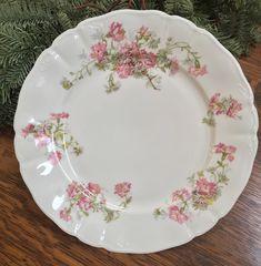 Antique Dishes, Antique Plates, Vintage Dishes, Vintage China, Antique Items, Dining Plates, Old Plates, Shabby Chic, Porcelain Skin