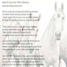 Wow I absolutely love this. My Telly boy just died so this is such an encouragement.