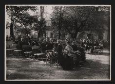 Park Bronowice- Otwarcie ogródka dziecięcego 1935 r. Park, Concert, Historia, Parks, Concerts