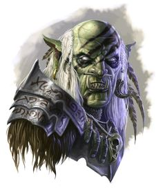 An Orc Shaman is definitely not the best race/class combo in DnD stat wise, it screams roleplay fun.