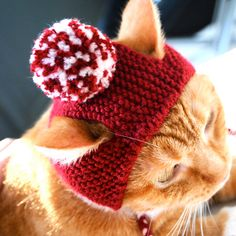 Pom Pom Cat Hat - Red (Crimson) and White - Hand Knit Cat Costume by bitchknits on Etsy https://www.etsy.com/dk-en/listing/78283607/pom-pom-cat-hat-red-crimson-and-white