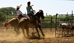 Let there be cowgirls! Team Penning