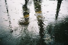 What I imagine when I picture a rainy day.