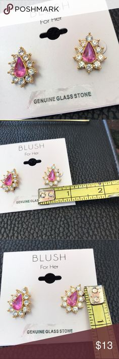 🎀Blush🎀 Teardrop style . Quality costume jewelry by blush. See pictures for details of measurements Blush Jewelry Earrings