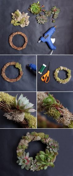 Succulent Wreath_Materials and DIY
