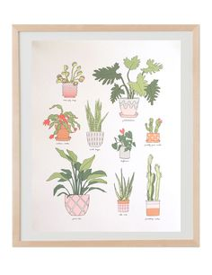 Houseplants art print in natural wood frame. Illustrated by Hartland Brooklyn.