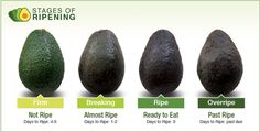 How to pick, store, and serve the perfect avocado #kitchentip