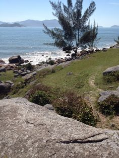 Praia da Pinheira - Palhoça/Santa Catarina -Brasil