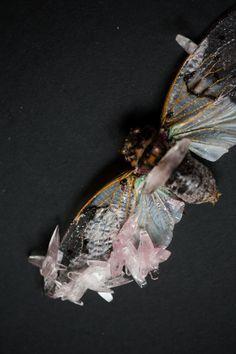 art fair fridays tyler thrasher christine dovey heirloom and knot ghost cicada