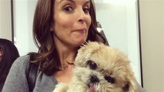 Two years before Marnie the Dog would be seen hobnobbing with Tina Fey, Jonah Hill and James Franco, she was just a friendly dog waiting to be adopted.