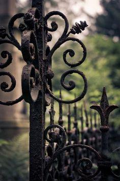 iron fence detail...