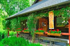 Olga Cafe, Orcas Island, WA  Will definitely have to try!  Will be on Orca Island a day with BF in Sept!