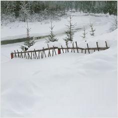 winter by pavelfadeevv #nature #mothernature #travel #traveling #vacation #visiting #trip #holiday #tourism #tourist #photooftheday #amazing #picoftheday