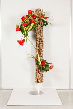 The Results | The 2014 Show | WAFA World Flower Show 2014