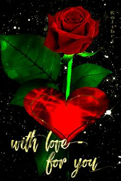 Beautiful Love Images, I Love You Pictures, Love Heart Gif, Love You Gif, Night Love, Good Night Sweet Dreams, Rose Flower Wallpaper, Love Wallpaper, Beautiful Bouquet Of Flowers