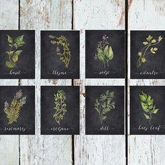 Herbal Kitchen, Kitchen Herbs, Kitchen Ideas, Herb Wedding, Above Kitchen Cabinets, Herbal Magic, Rustic Kitchen Decor, Great Housewarming Gifts, Drying Herbs