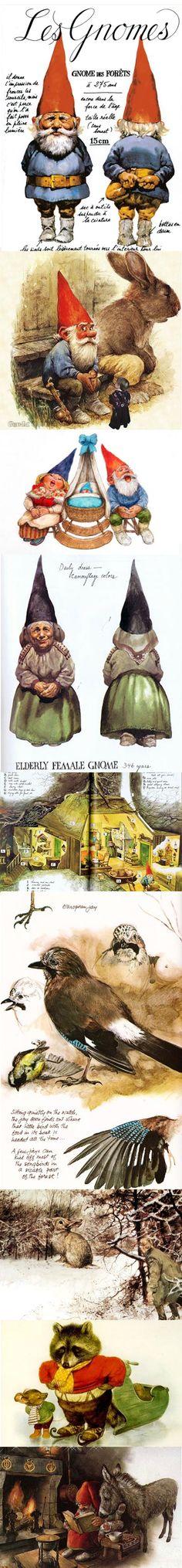 BOOK: David the Gnome _ David Gnomo - Illust: Rien Poortvliet (Livro desejado ha tantos anos! ♥ Vintage 70s Book)