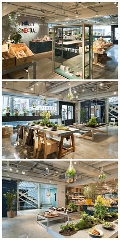 Working in partnership with peninsula contracts and bainton flooring todays special jiyugaoka flagship store by schemata architects tokyo november 12th 2012 this malvernweather Choice Image