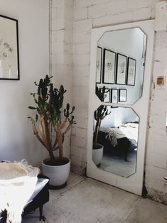 mirrors on an old door, great idea
