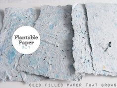 How-To: Plantable Wildflower or Herb Paper...great idea if you save your own seeds ...would even make great gifts!