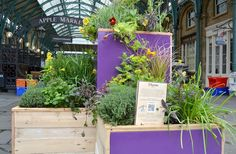 Covent Garden pop-up herb garden by Crabtree & Evelyn. Via London Beauty Queen