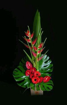 Cool tropical arrangement with gerbera daisies, anthurium, and heliconia Contemporary Flower Arrangements, Tropical Flower Arrangements, Creative Flower Arrangements, Church Flower Arrangements, Beautiful Flower Arrangements, Flower Centerpieces, Flower Decorations, Beautiful Flowers, Altar Decorations