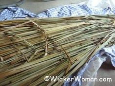 Step-by-step directions by Cathryn Peters on how to process cattail leaves after gathering them for chair seat and basket weaving projects. Nature Crafts, Fun Crafts, Diy And Crafts, Arts And Crafts, Handmade Crafts, Handmade Rugs, Weaving Projects, Craft Projects, Craft Ideas