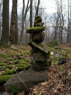 moss covered cairn along the Pecoy Notch Trail