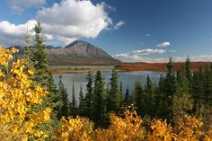 Fall in Alaska.  View on Susitna River from Denali Highway