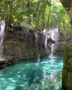 How breathtaking is this translucent river in Riviera Maya, Mexico? 😍 Tag someone who needs a jungle getaway! Beautiful Places To Travel, Cool Places To Visit, Places To Go, Wonderful Places, Beautiful Beaches, Nature Photography, Travel Photography, Nature Gif, Nature Videos