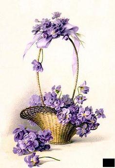 Букет цветов,