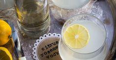 citrus rosemary vodka spritzer-9676