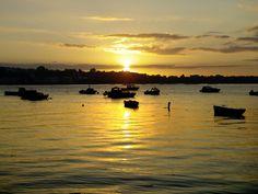 Wexford Ireland, National Rail, Emerald Isle, Sydney Australia, Walking Tour, Far Away, Places To See, Scotland, Tours