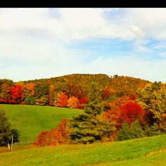 Boone NC 2011... my home state- it really is this beautiful!!