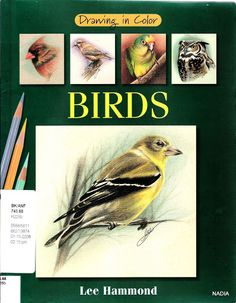 DRAWING COLORS BIRDS - Michelle L. Porte V. - Picasa Webalbums
