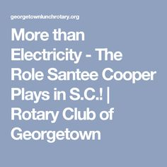 More than Electricity - The Role Santee Cooper Plays in S.C.! | Rotary Club of Georgetown