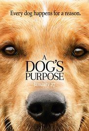 Poppin' Movies!: A Dog's Purpose (2017)