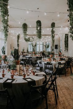 Plants galore at this charmingly quirky wedding reception   Image by Linda Lauva Photography