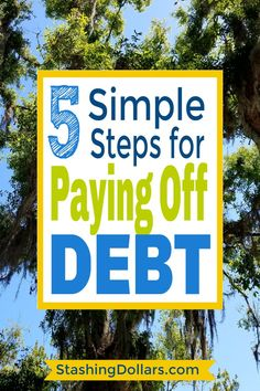 Got debt? Get information on how to pay off debt fast. These 5 simple steps will have you on your way to debt freedom quickly. Miles Credit Card, Paying Off Credit Cards, Debt Repayment, Debt Payoff, Debt Consolidation, Make 100 A Day, Get Out Of Debt, Lose Weight In A Week, Budgeting Money