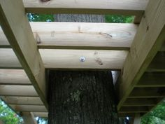 The 'foundation' is complete… This is likely the most important part of the tree fort build. If you don't start with a good and level platform, it will create issues later. …