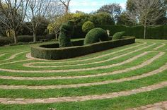 Garden topiary at the centre of a labyrinth