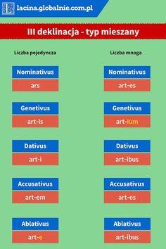 Deklinacja 3 typ mieszany #łacina #deklinacja3 #typmieszany #łacinadeklinacja http://lacina.globalnie.com.pl/deklinacja-3-lacina/