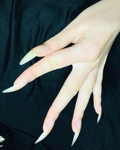 Long Fingernails, Long Nails, Natrual Nails, Garra, Pretty Hands, Beautiful Hands, Long Natural Nails, Nine Inch Nails, Classy Aesthetic