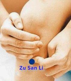 Health information other: Zu San Li, the magic acupuncture point! Tai Chi, Massage Pressure Points, Point Acupuncture, Hernia, Chocolate Slim, Self Massage, Massage Logo, Acupressure Points, Acupressure Massage