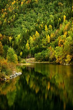 Norway in Autumn | Flickr - Photo Sharing!