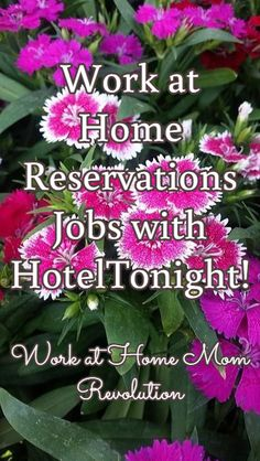 Work at Home Reservations Jobs with HotelTonight! / Work at Home Mom Revolution