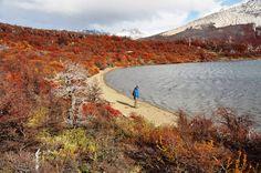 """""""Sendero Fitz Roy"""", considerada a melhor trilha de montanhas da cidade de El Chaltén na Patagonia Argentina. Haja pernas para uma baita subida íngreme de cerca de 3h (só pra subir). Visitar a região no outono é isso: florestas nos mais diversos tons de amarelo e vermelho . Lindo!"""