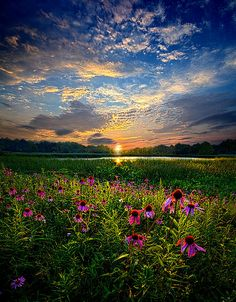 End Of The Night Photograph by Phil Koch