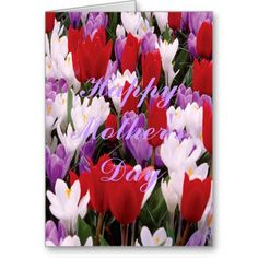 Colorful Tulip Flowers Greeting Card http://www.zazzle.com/colorful_tulip_flowers_greeting_card-137161378144544934?rf=238271513374472230  #mothersday